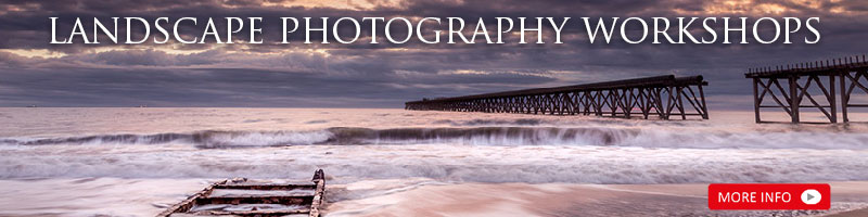 Photography & Nature Workshops